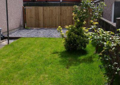 garden-after